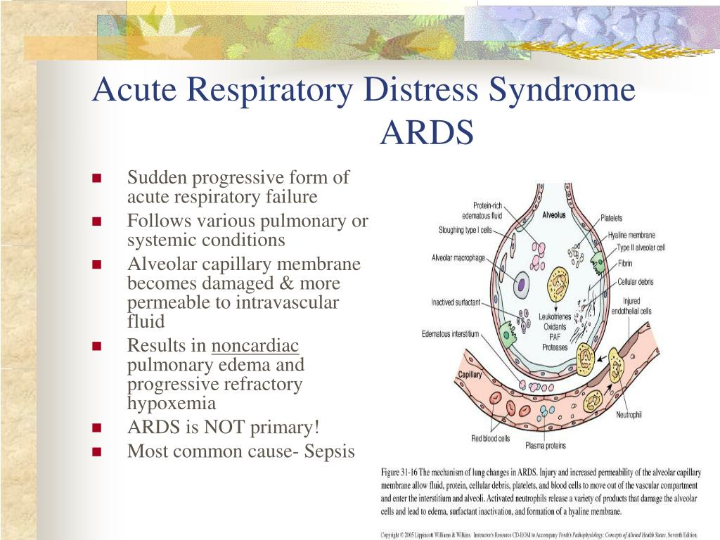 PPT - Respiratory: Respiratory Failure and ARDS PowerPoint ...