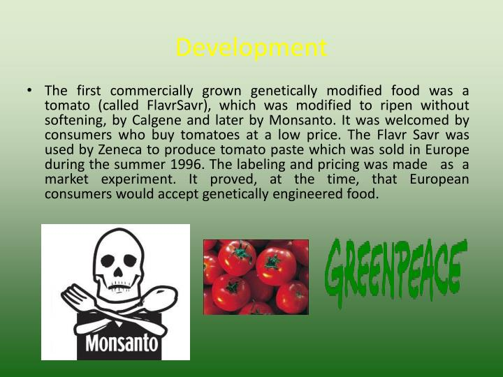 genetically modified food and monsanto essay Gm foods are genetically modified using biotechnology more and more gm foods appear on the shelves of our stores and supermarkets nowadays, and make their way into our kitchens gm foods are designed for greater resistance to viruses and pests, higher nutritional value and longer shelf life.