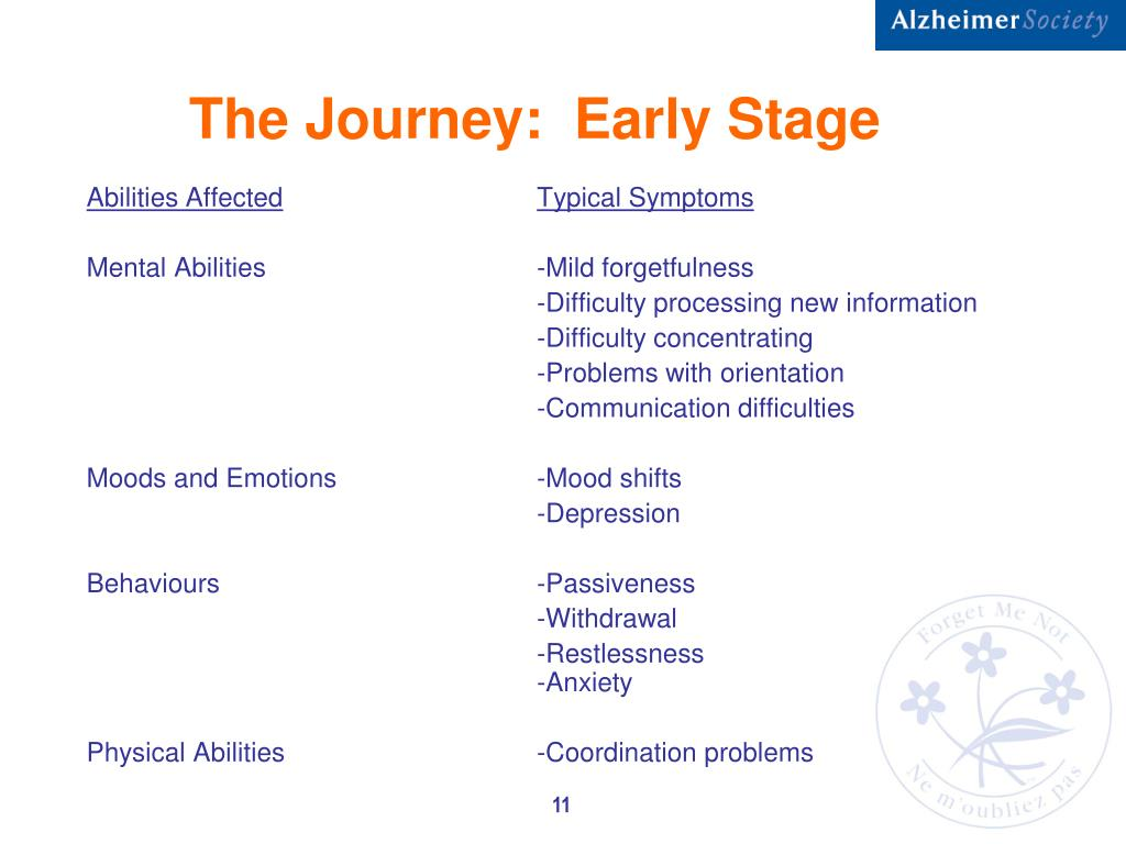 The Journey:  Early Stage