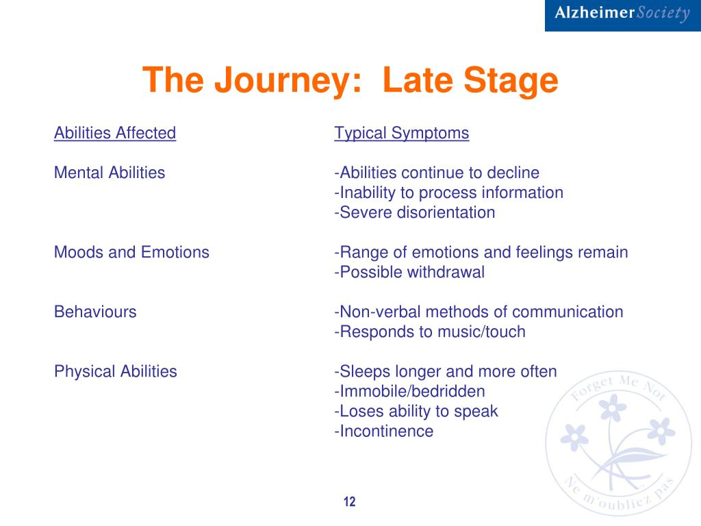 The Journey:  Late Stage