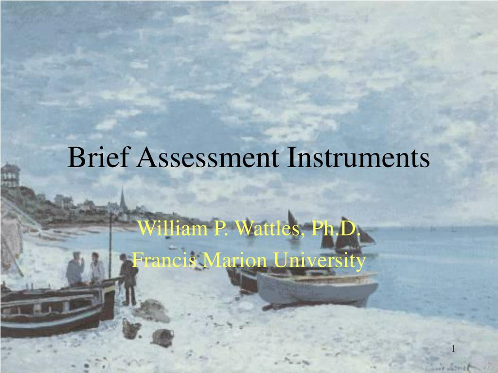 brief assessment instruments l.