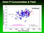 grain p concentration yield