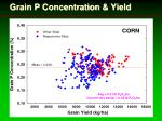 grain p concentration yield22