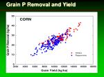 grain p removal and yield24