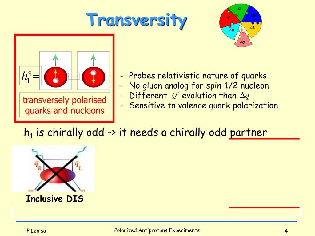 transversely polarised