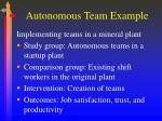 autonomous team example