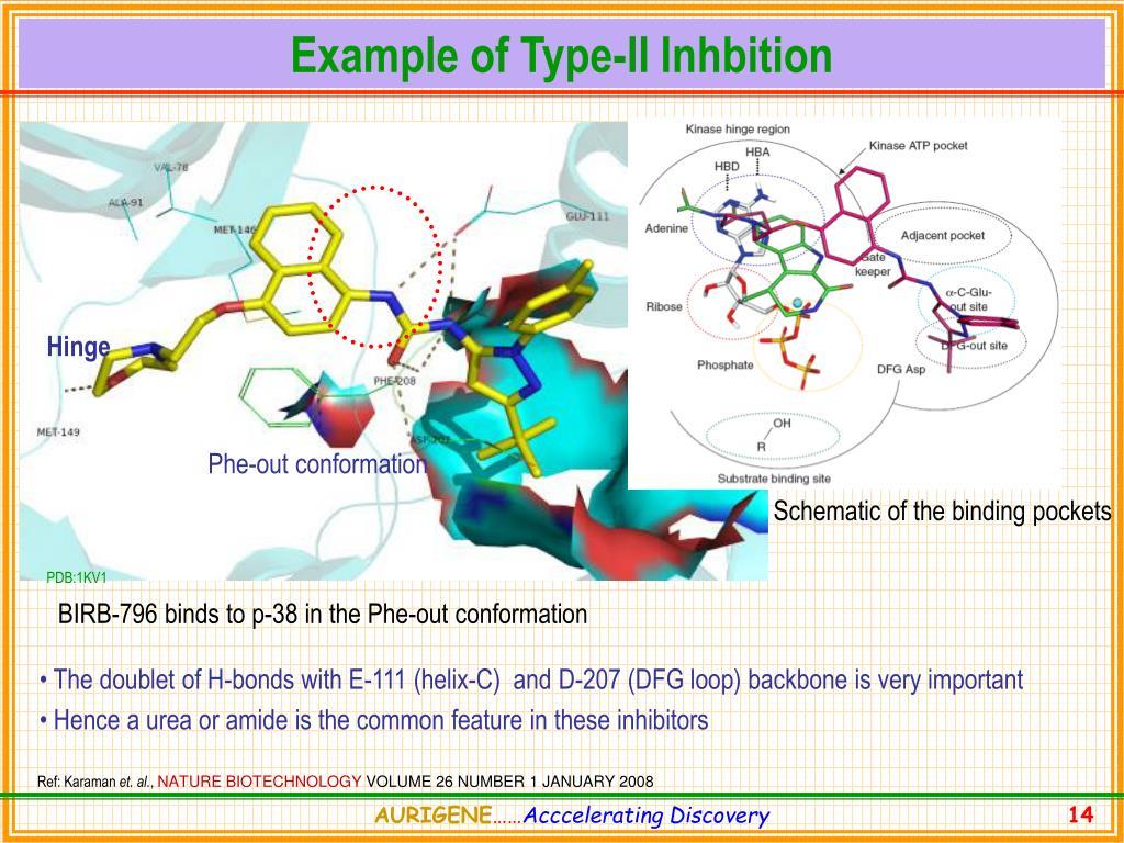 Example of Type-II Inhbition