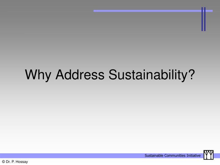 Why address sustainability