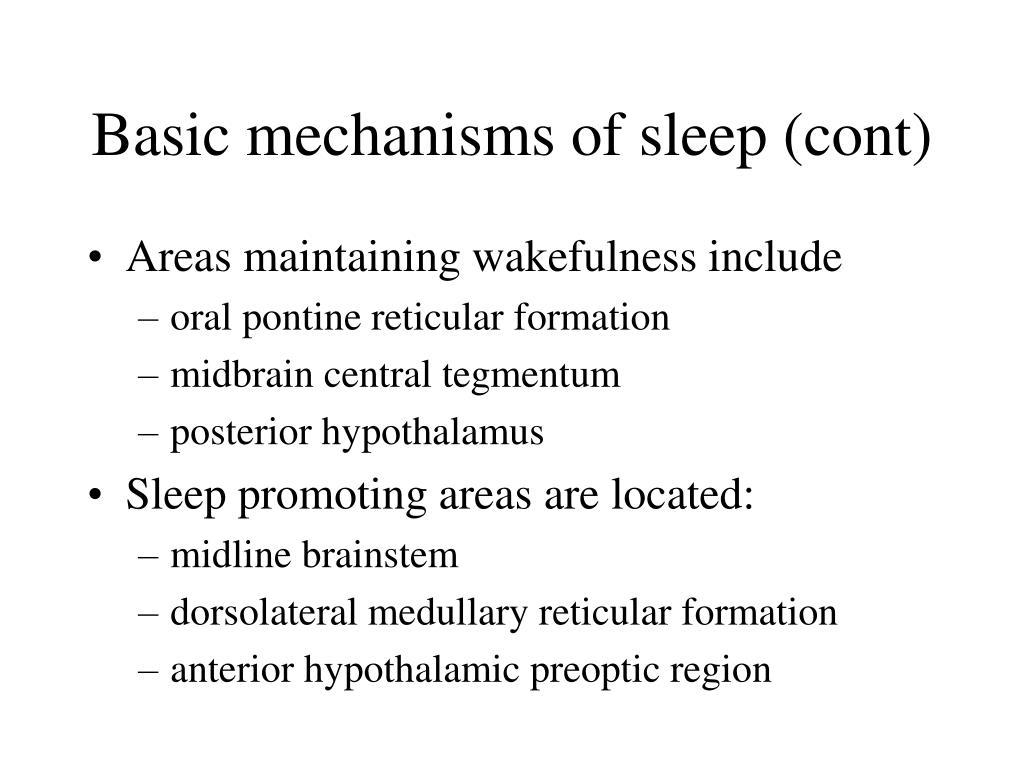Basic mechanisms of sleep (cont)