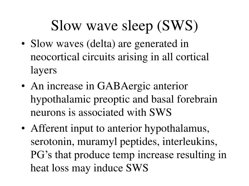 Slow wave sleep (SWS)