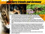 your furry friends and germany
