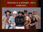 diversity is a strength not a weakness
