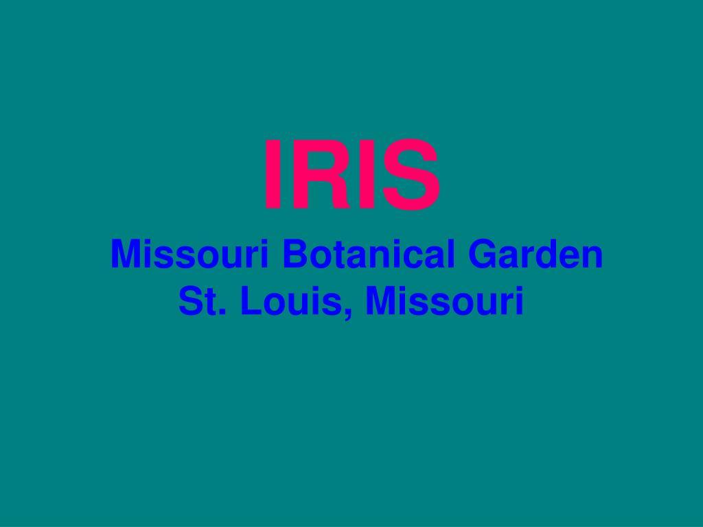 iris missouri botanical garden st louis missouri l.