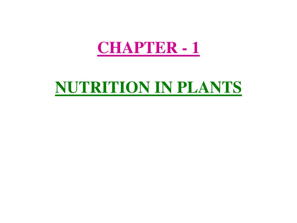 chapter 1 nutrition in plants l.