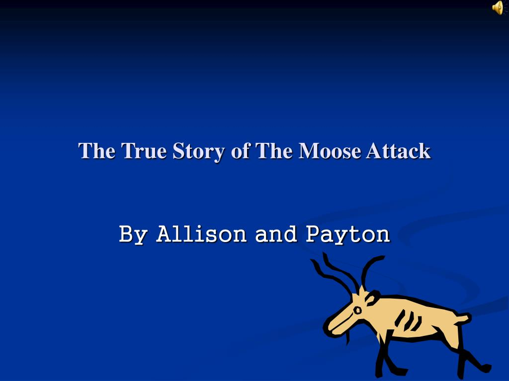 the true story of the moose attack l.