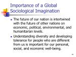 importance of a global sociological imagination