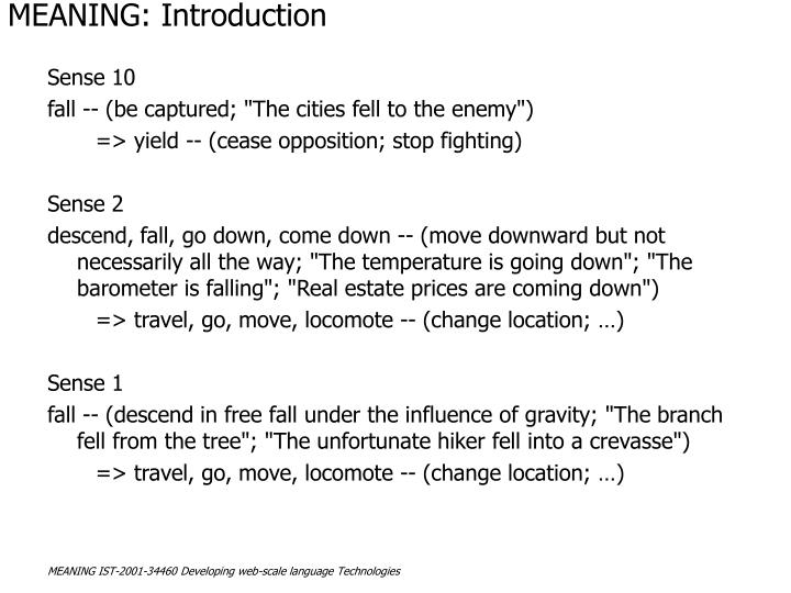 Meaning introduction3