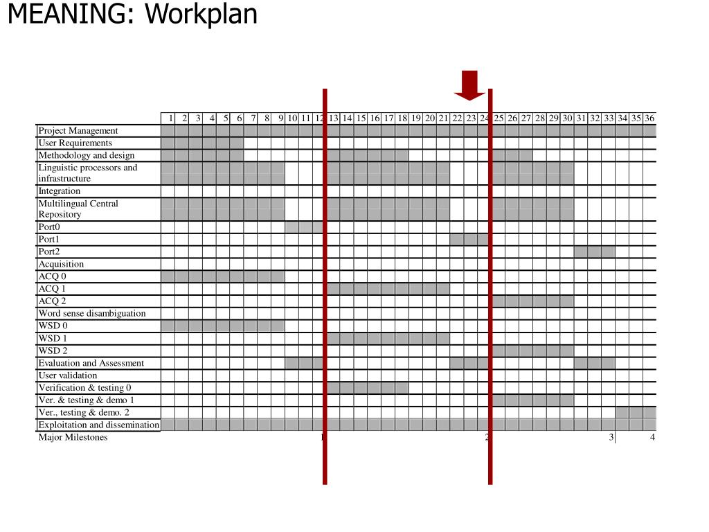 MEANING: Workplan