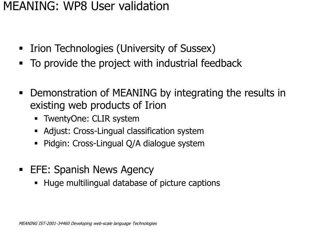 MEANING: WP8 User validation