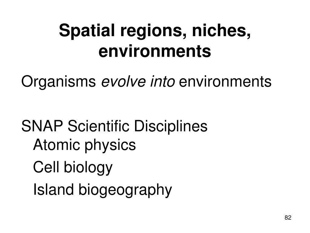 Spatial regions, niches, environments