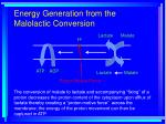 energy generation from the malolactic conversion