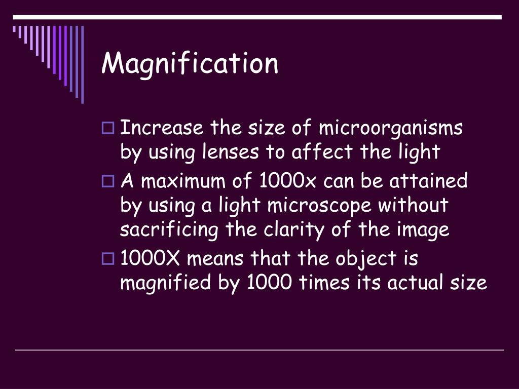 Magnification
