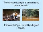 the amazon jungle is an amazing place to visit