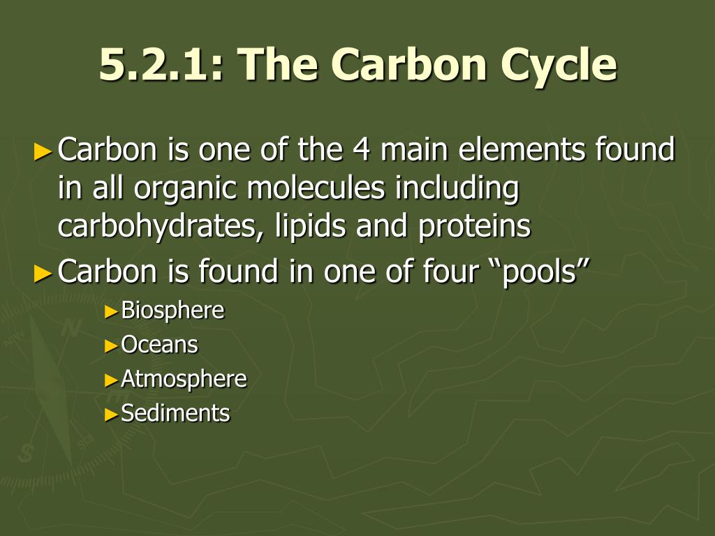 5.2.1: The Carbon Cycle