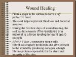 wound healing4