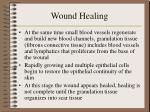 wound healing5