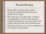 wound healing6