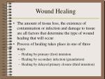 wound healing7
