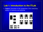 lab 1 introduction to the itlab