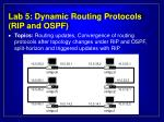 lab 5 dynamic routing protocols rip and ospf