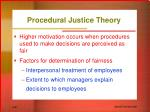 procedural justice theory21
