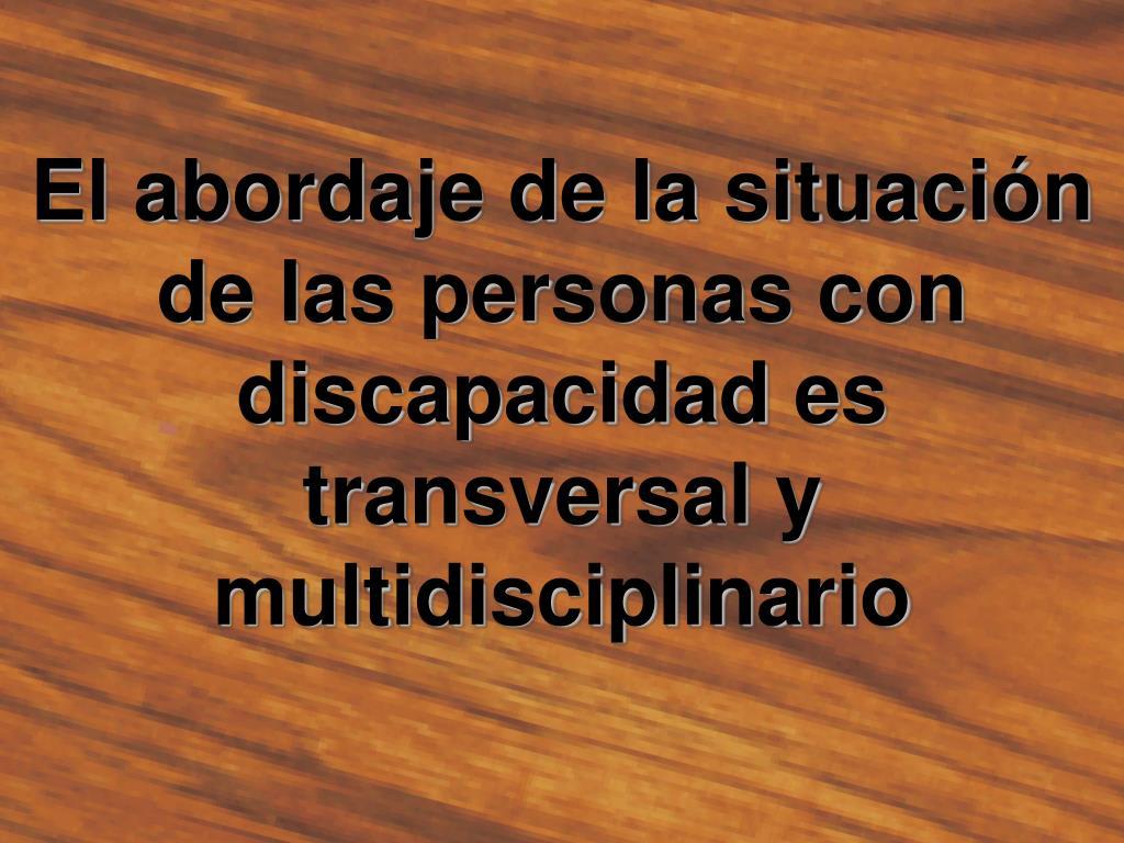 El abordaje de la situación de las personas con discapacidad es transversal y multidisciplinario