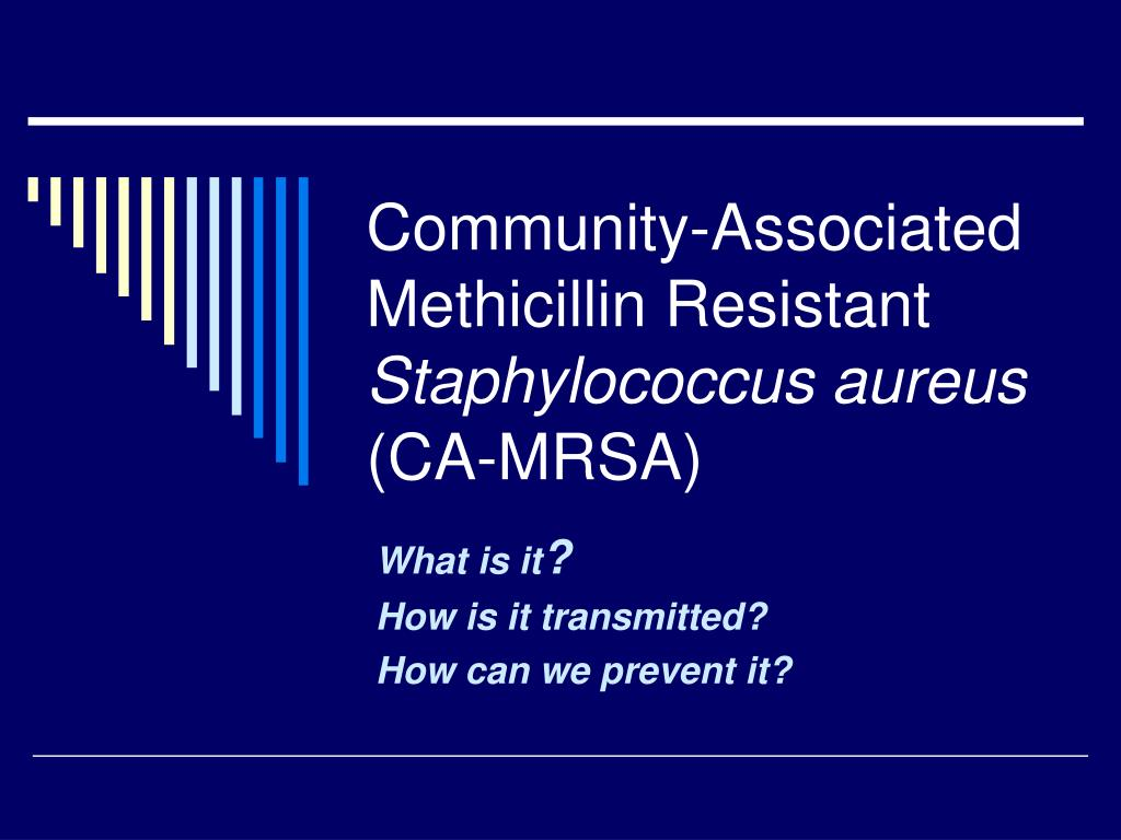 community associated methicillin resistant staphylococcus aureus ca mrsa l.