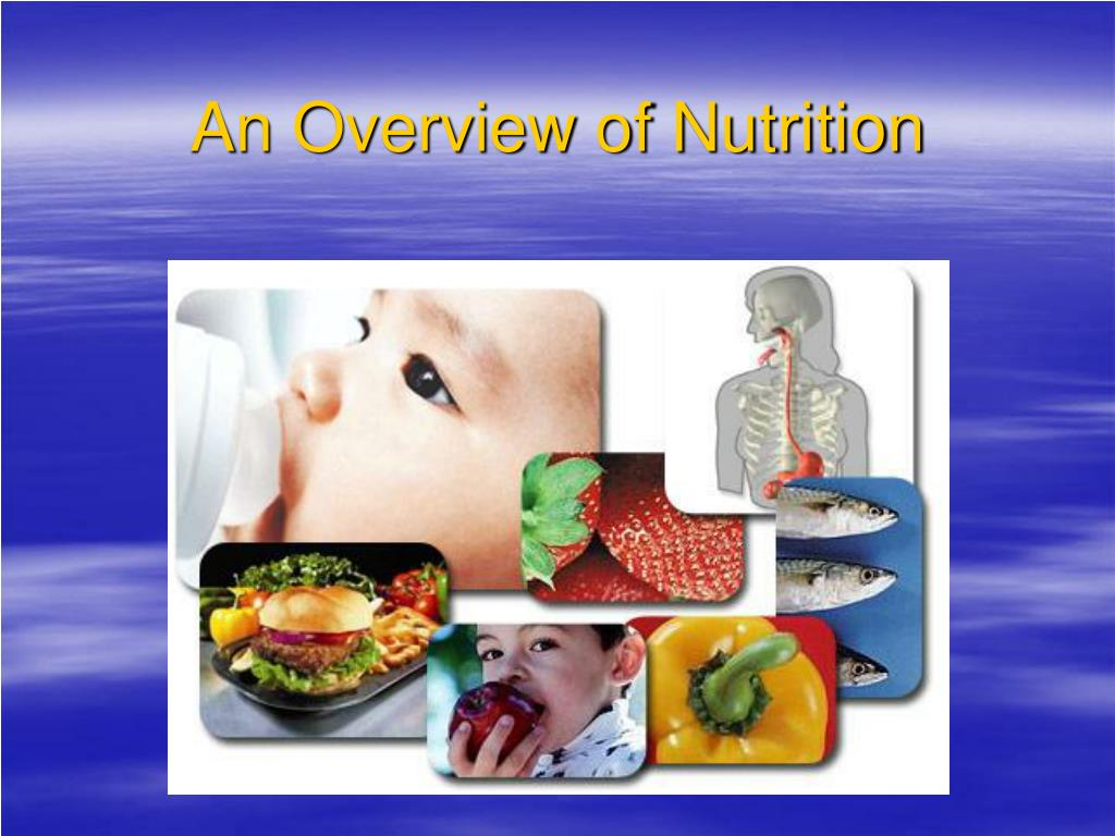 an overview of nutrition l.
