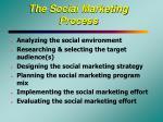 the social marketing process21