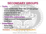 secondary groups