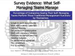 survey evidence what self managing teams manage