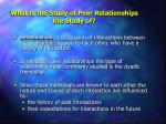 what is the study of peer relationships the study of