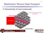 mechanism phonon heat transport