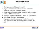 issues risks