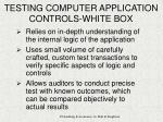testing computer application controls white box