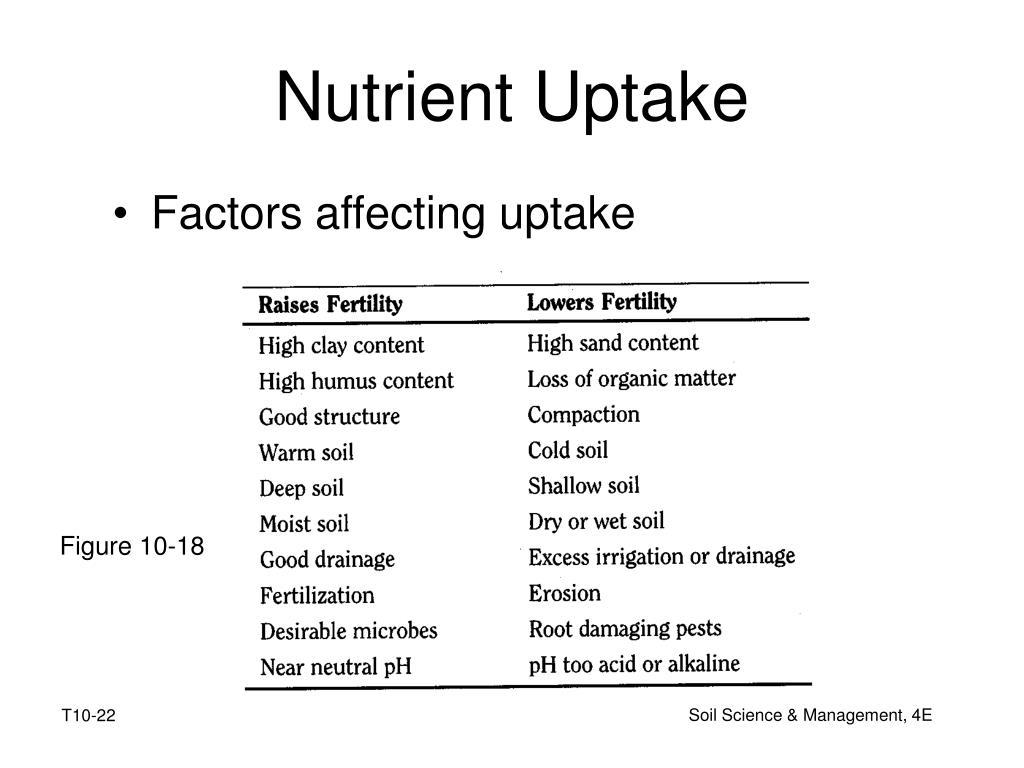 Nutrient Uptake
