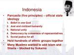 indonesia49