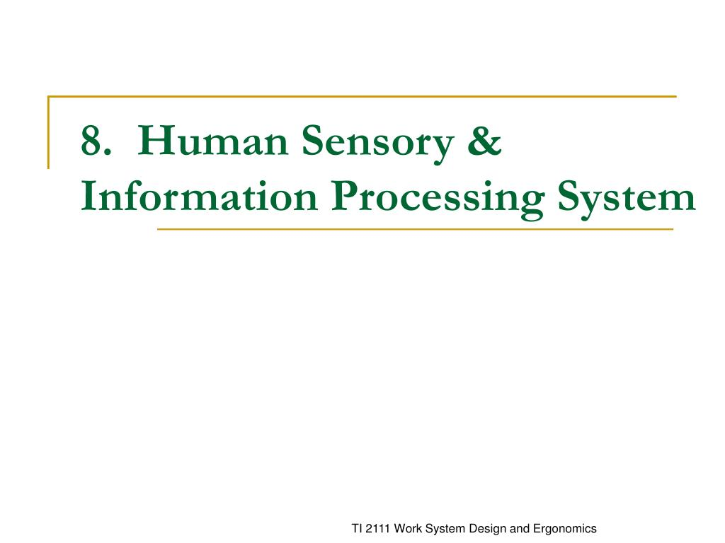 8 human sensory information processing system l.