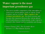 water vapour is the most important greenhouse gas