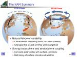 the nam summary